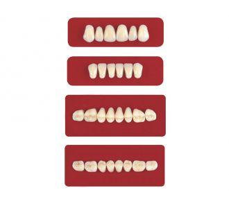Акриловые зубы Unicryl боковые верхние форма 12 цвет B2 8шт